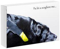 La sedia di Lulù. Confezione regalo con libro e cd - Marina Casciani, Alessandra Santandrea | Libro | Itacalibri